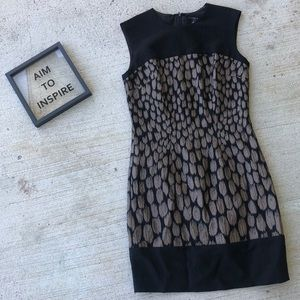 Ann Taylor fitted Black & Tan Dress size 0